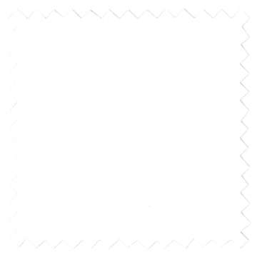 White Turtledove